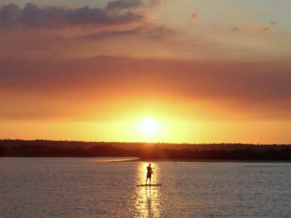 silhoutte of man against sunset paddle boarding